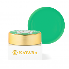 GEL COLOR KAYARA PREMIUM 5G...